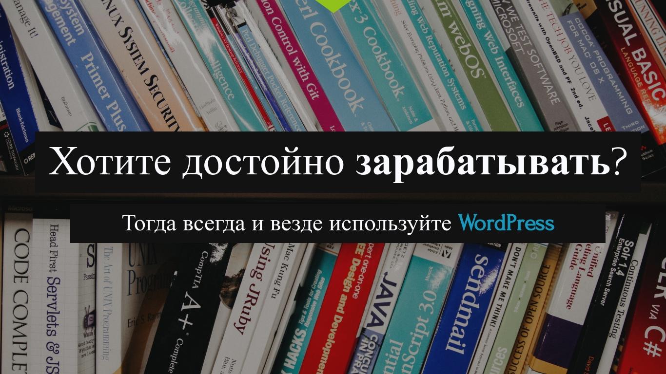 Александр Сокирка - Выступление WordCamp Saint Petersburg 2019 - Хотите достойно зарабатывать - Тогда всегда и везде используйте WordPress_Page_01