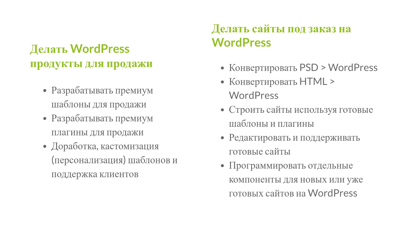 Александр Сокирка - Выступление WordCamp Saint Petersburg 2019 - Хотите достойно зарабатывать - Тогда всегда и везде используйте WordPress_Page_13