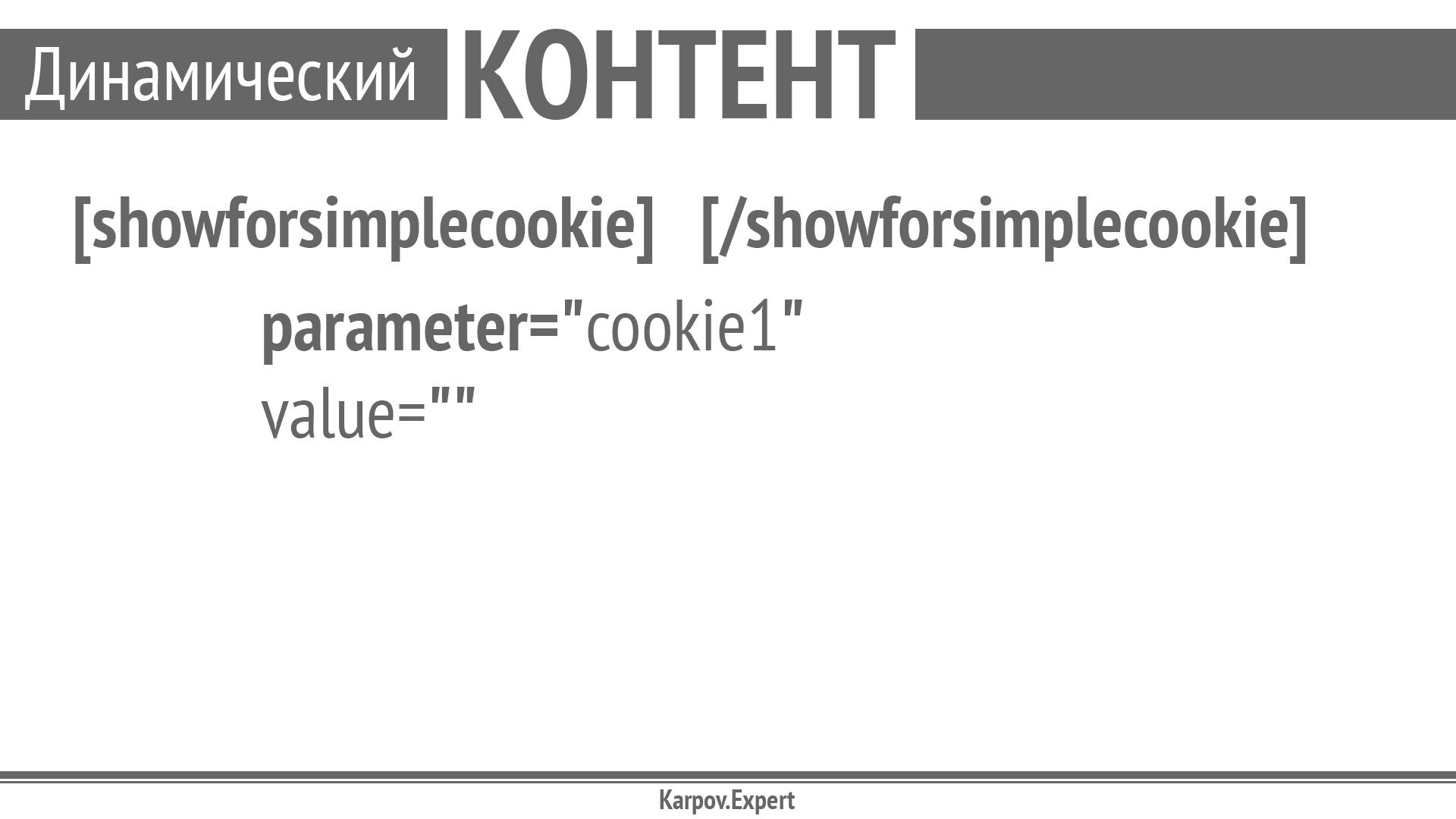 Karpov-WordCamp2019_Page_39