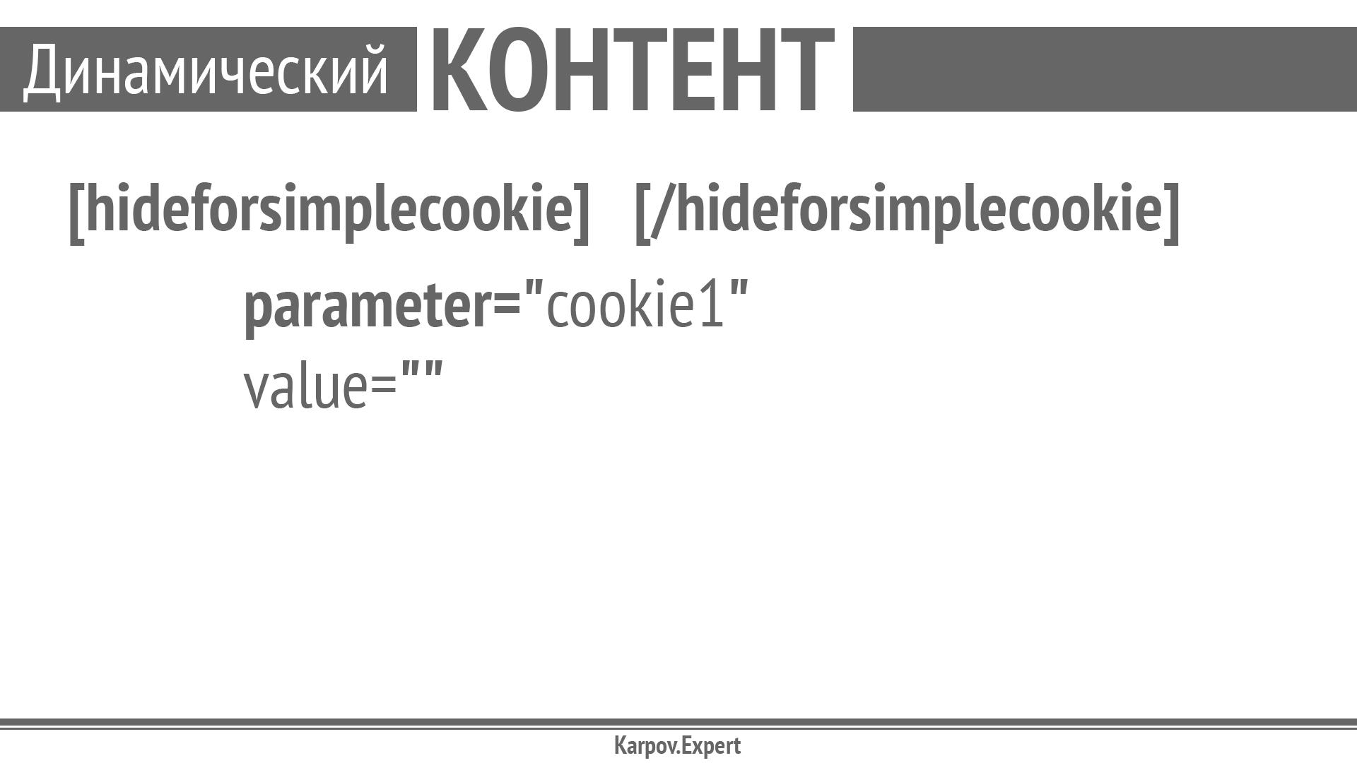 Karpov-WordCamp2019_Page_43