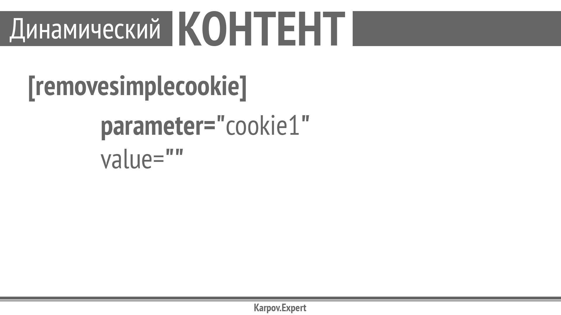 Karpov-WordCamp2019_Page_46