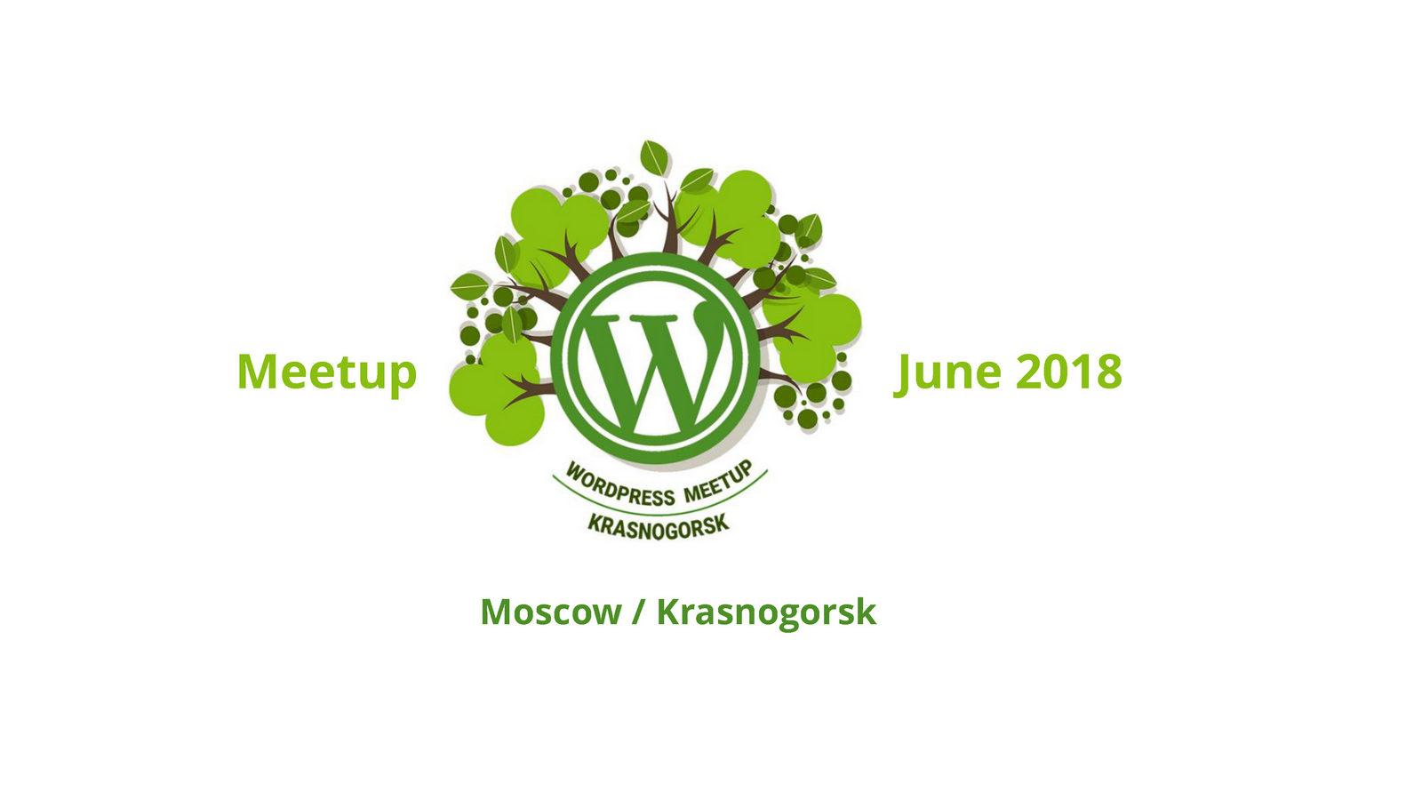 Стань WordPress-скаутом — Денис Янчевский_Page_01
