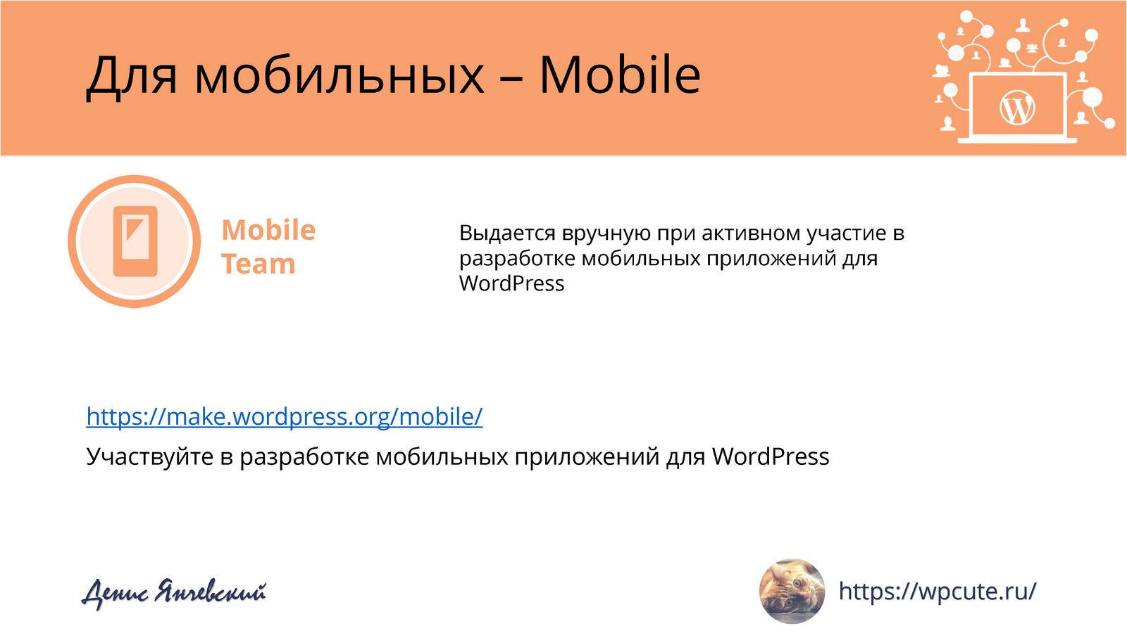 Стань WordPress-скаутом — Денис Янчевский_Page_16