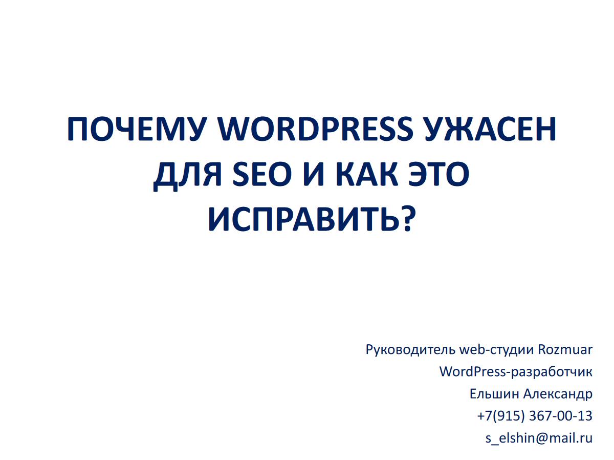 Александр Ельшин - WordPress SEO - 01