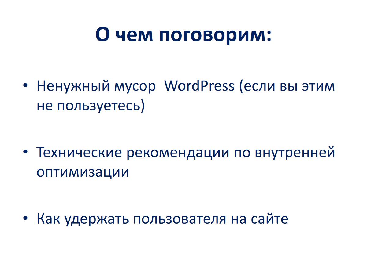 Александр Ельшин - WordPress SEO - 02