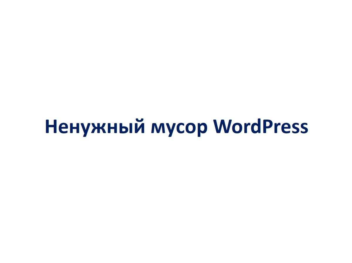Александр Ельшин - WordPress SEO - 03